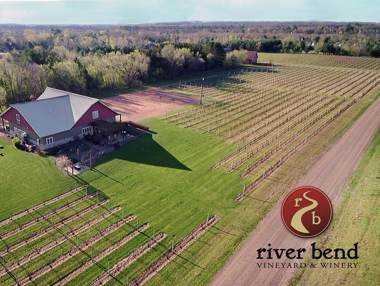 Overview Vineyard.jpg