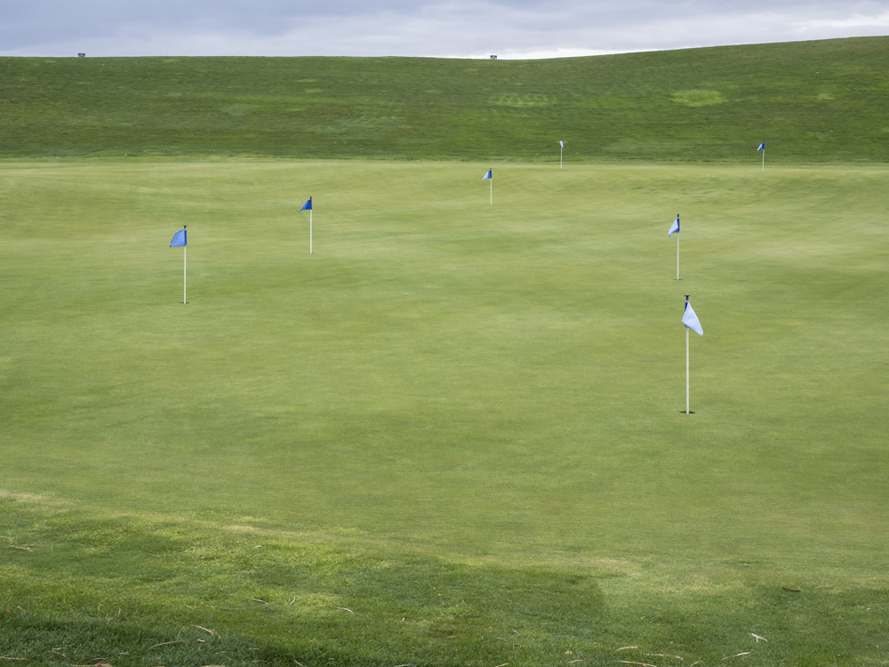 Field(Golf).jpg