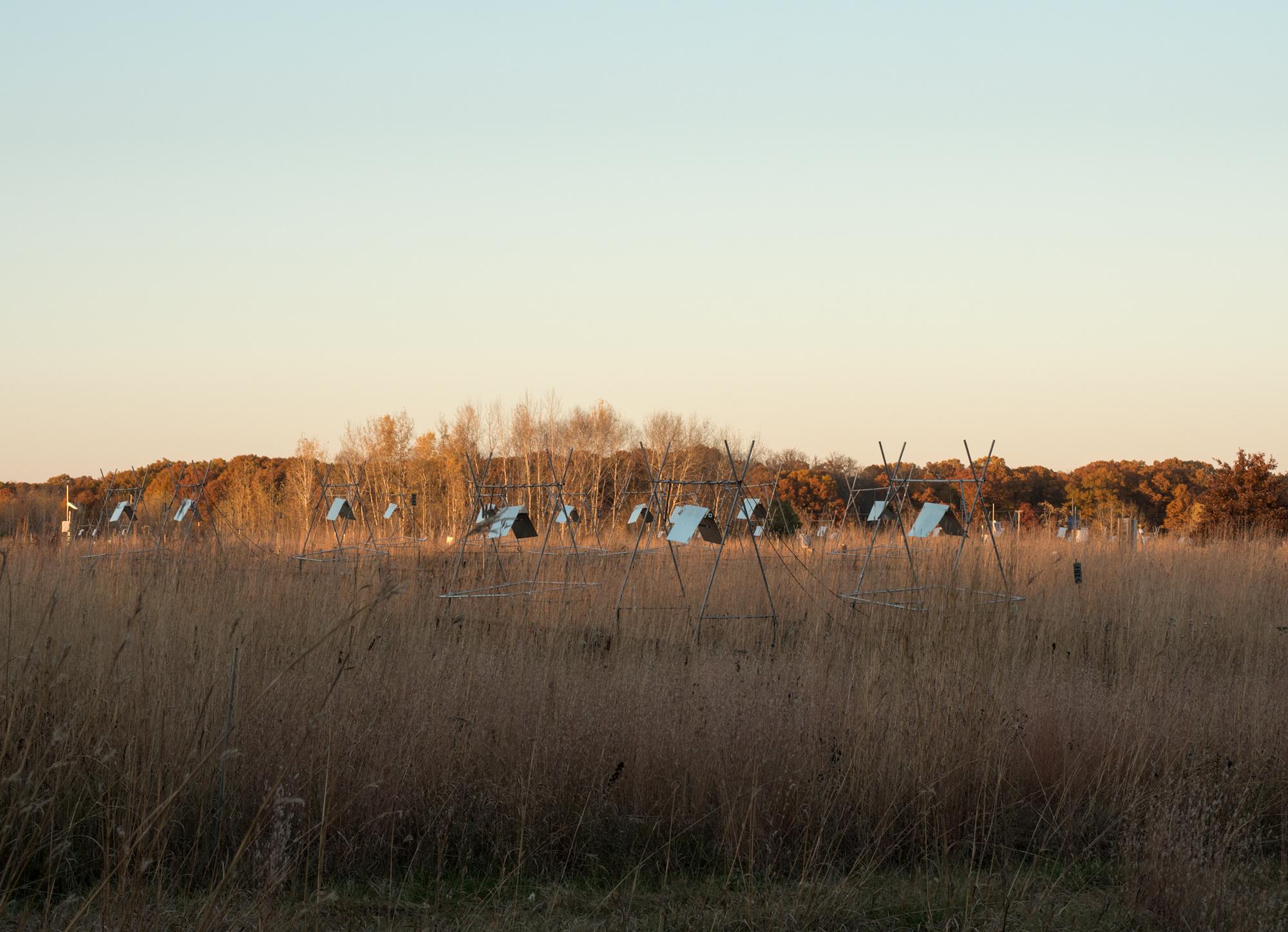 sunsetBigBioteepees.jpg
