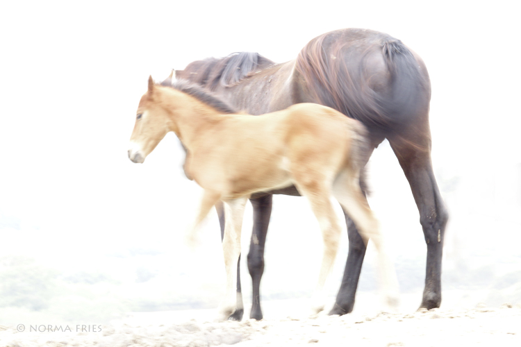 """WH151: """"Mother and baby"""""""