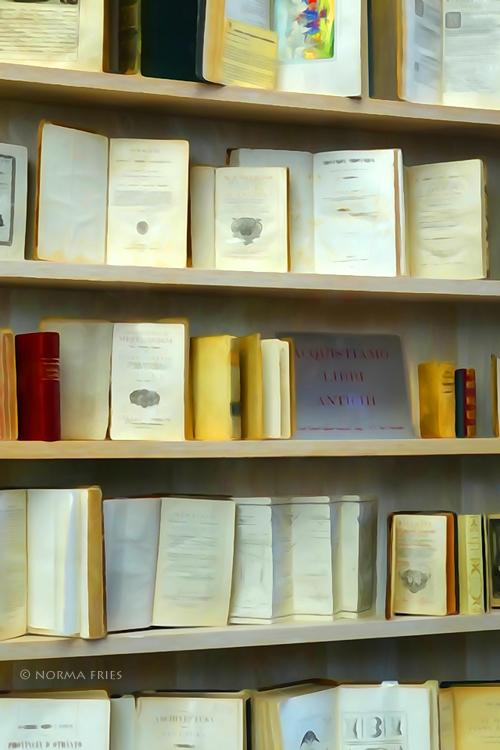 "IT299: ""Italy: antique book store"""