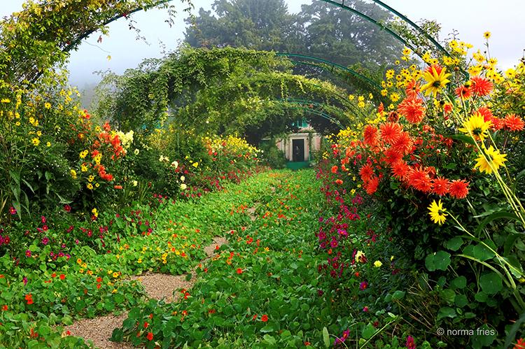 FR408: Monet's garden archway