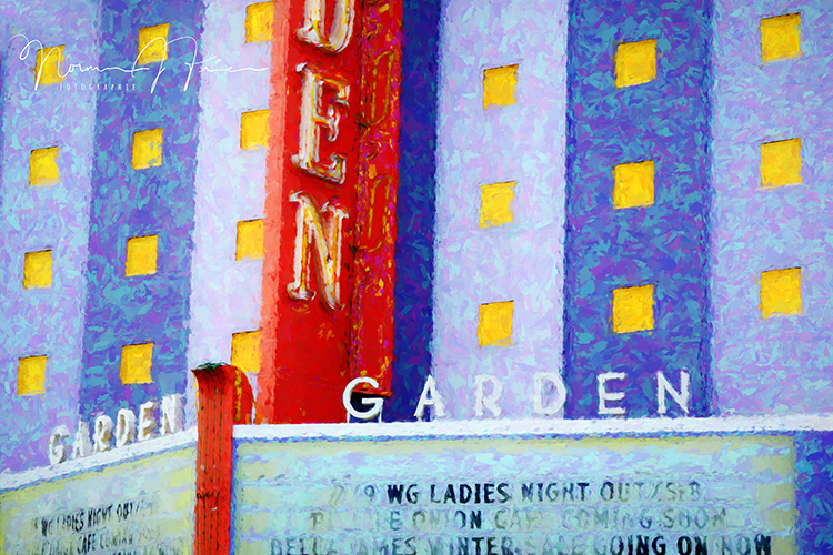 WG607: Willow Glen - Ladies night out