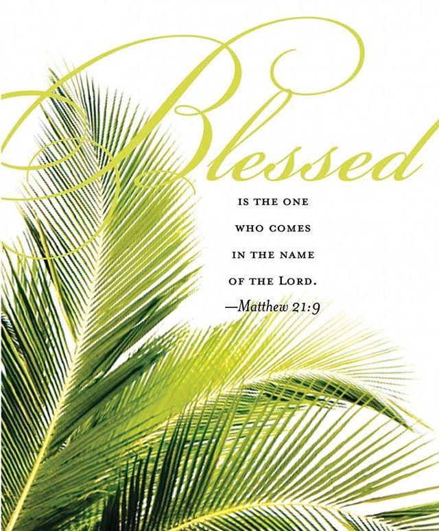 Palm Sunday! #priority1ministries #palmsunday #thetriumphalentry