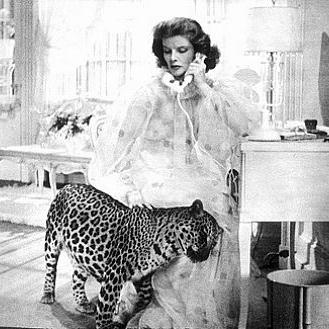 Bringing-Up-Baby-Nissa-the-leopard.jpg
