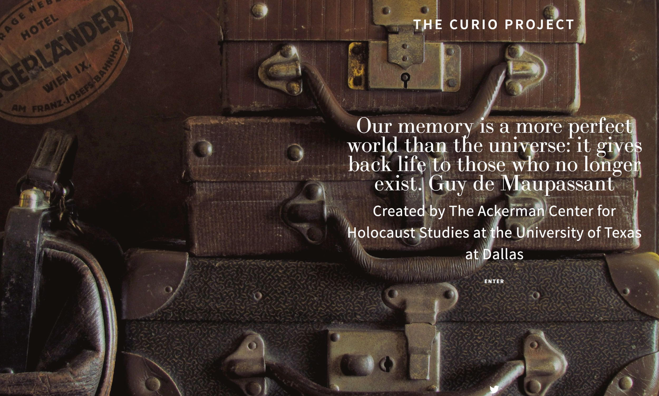 The Curio Project, thecurioproject.com