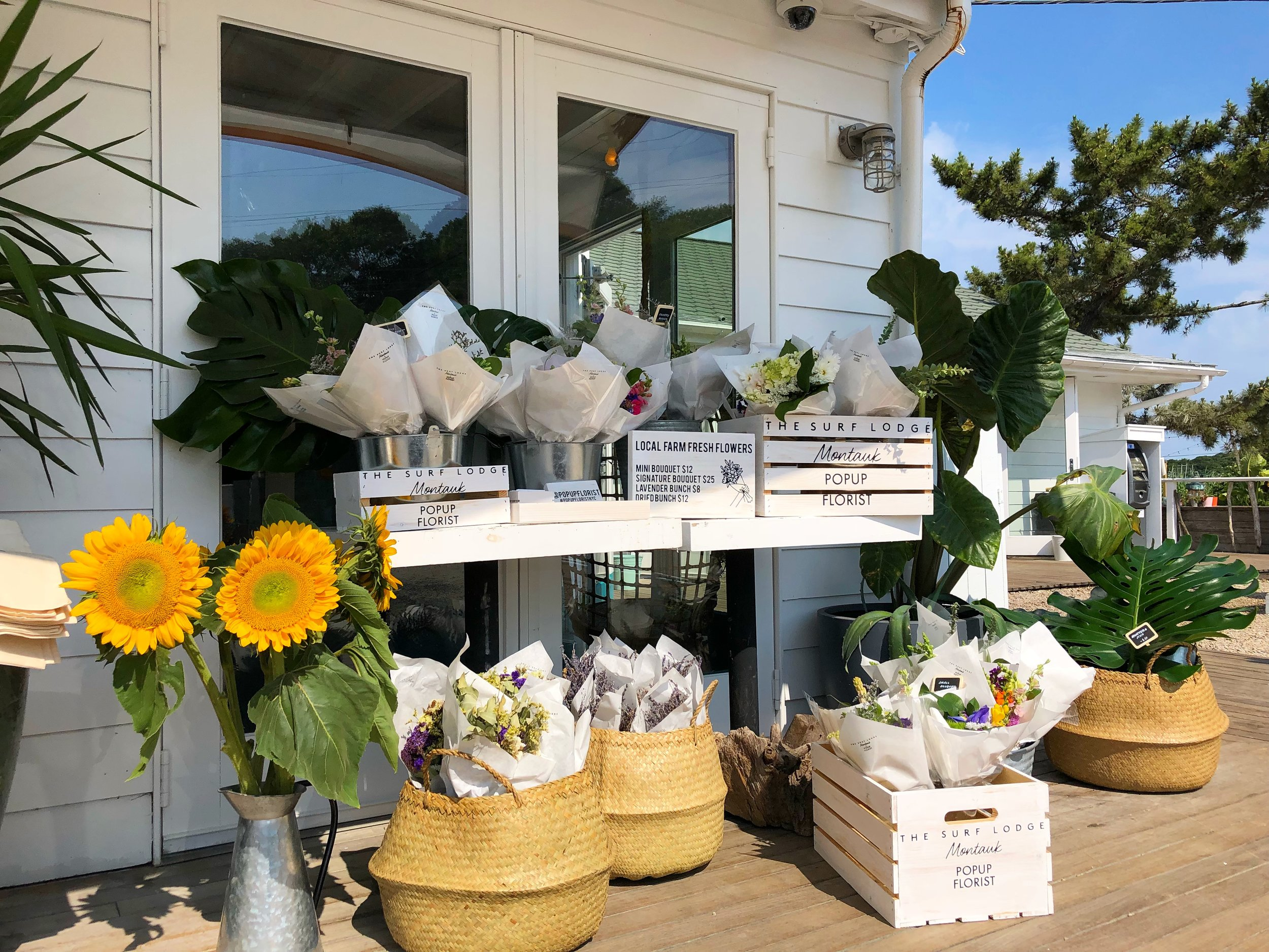 POPUP at the Surf Lodge, July 2018