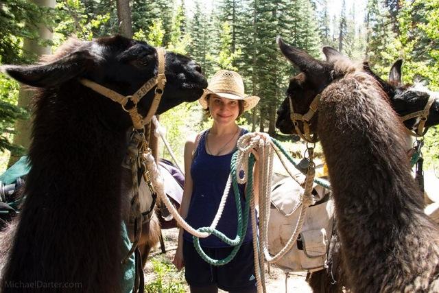 Sarah Fuss Kessler occasionally travels in packs.