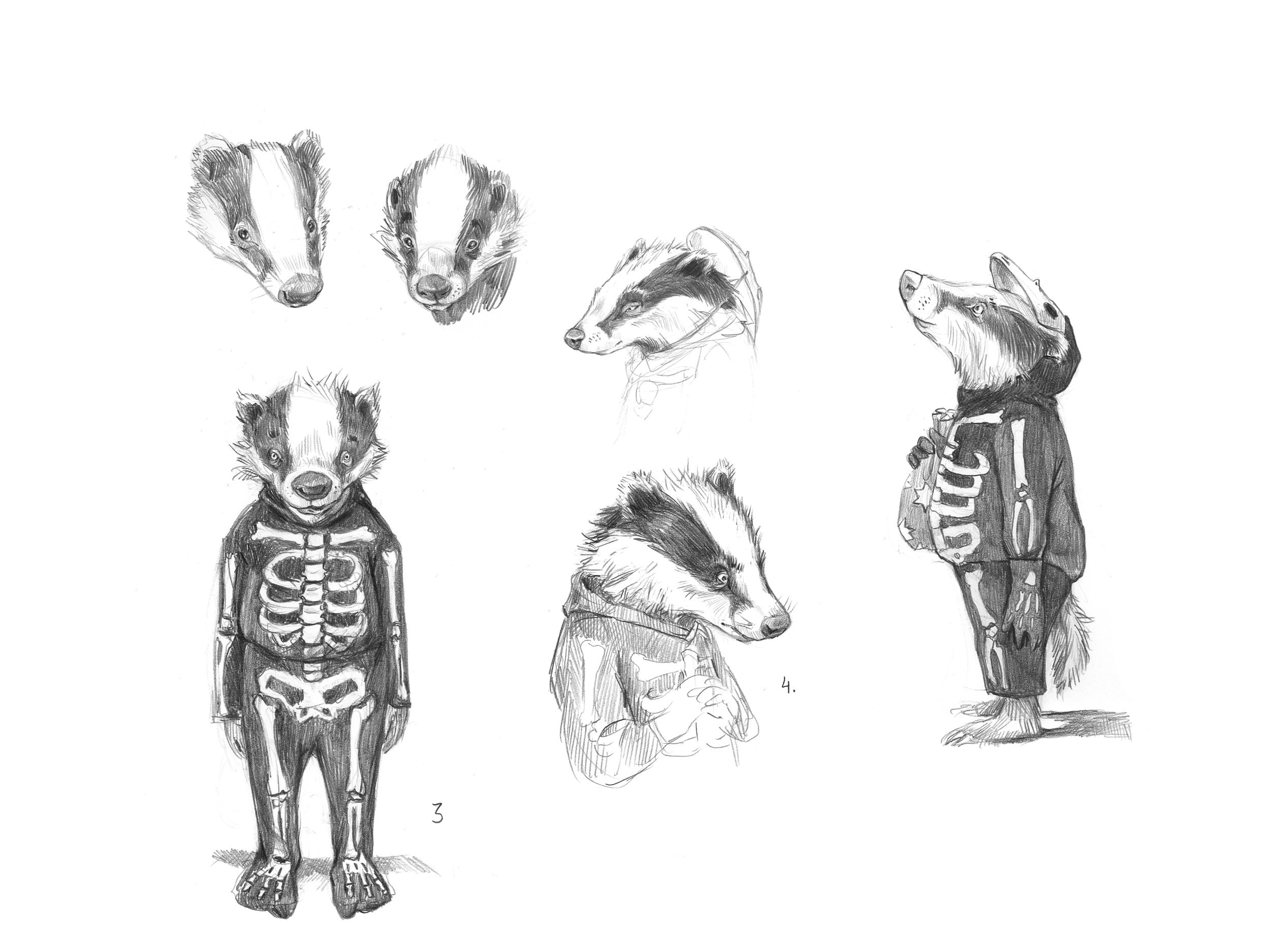 Badger's son