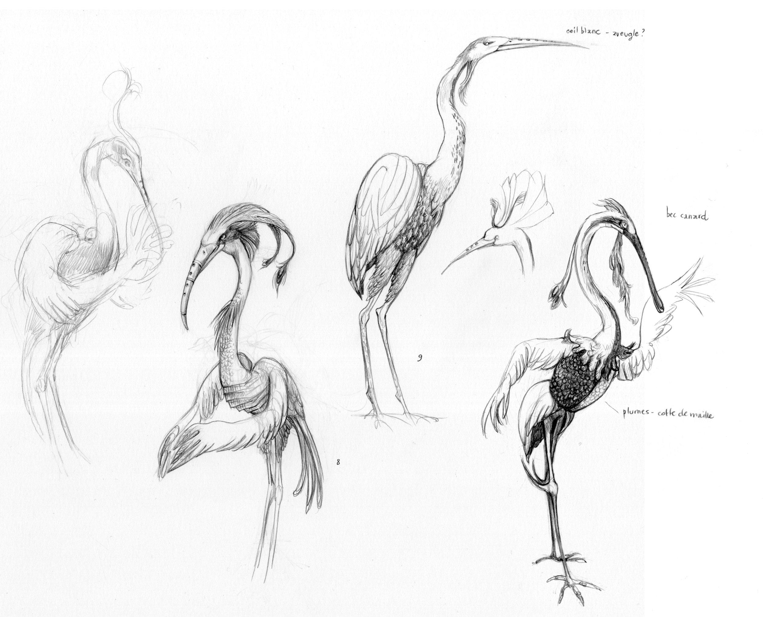 Fantastic flute-bird