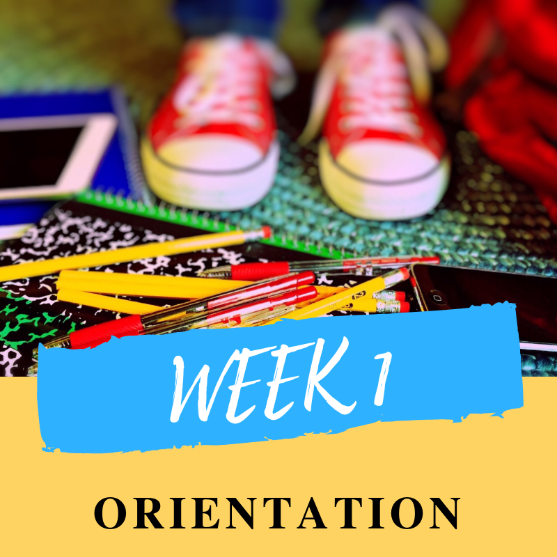 Moving from primary to secondary is a big leap. Your first week is all about orientation, finding your way around the school, getting to know your timetable.