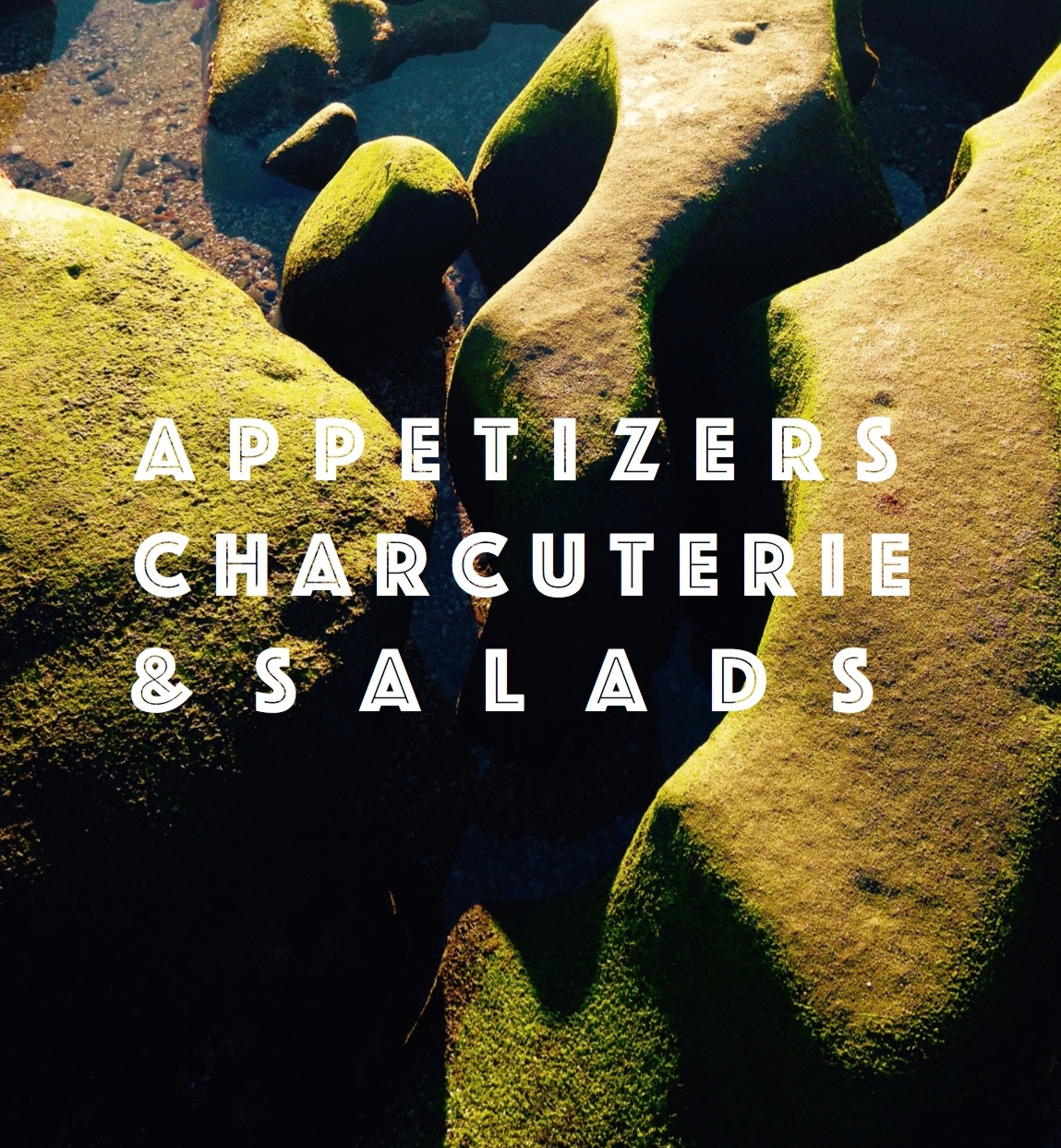 apps, charcuterie & salads.jpg