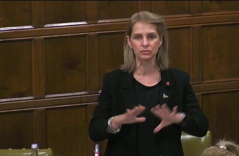 Bath MP Were Hobhouse speaking at the debate