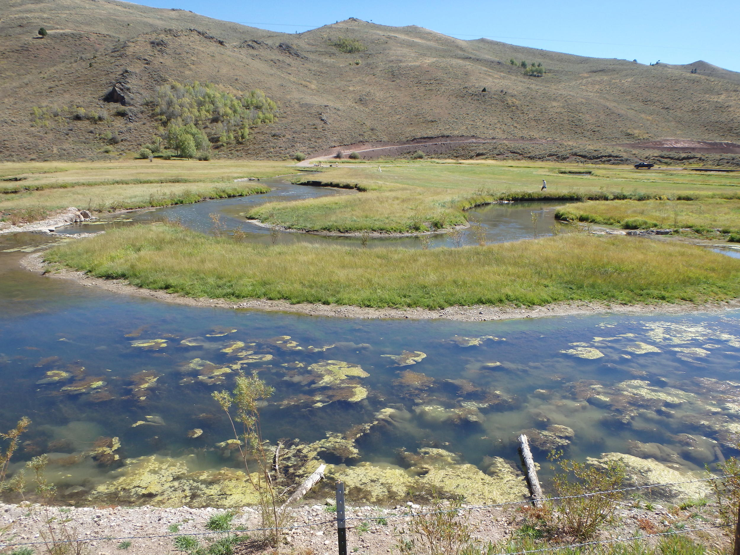 Stream Restoration oxbow created by re-routing the creek to provide fish habitat and protect a road from erosion