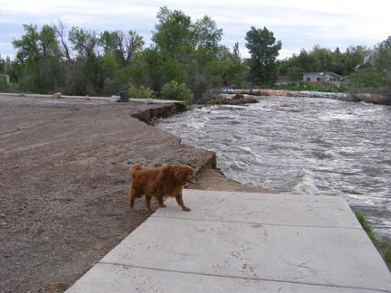 June 2010 flooding