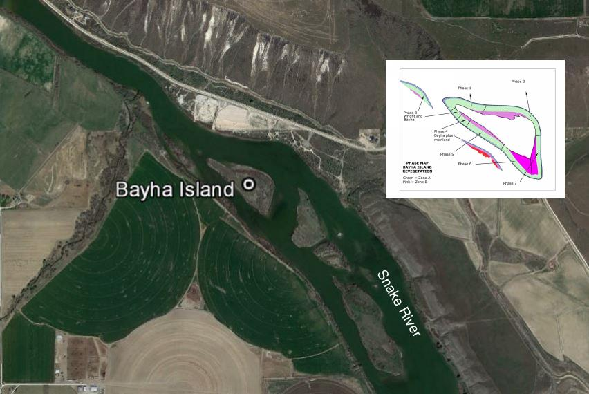 Bayha Island location on the Snake River and phased planting plan.
