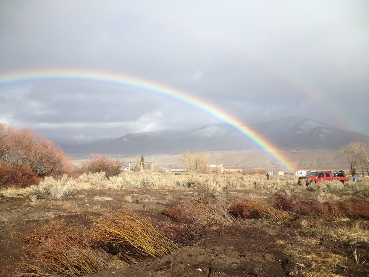 rainbow over a wildlife habitat restoration project