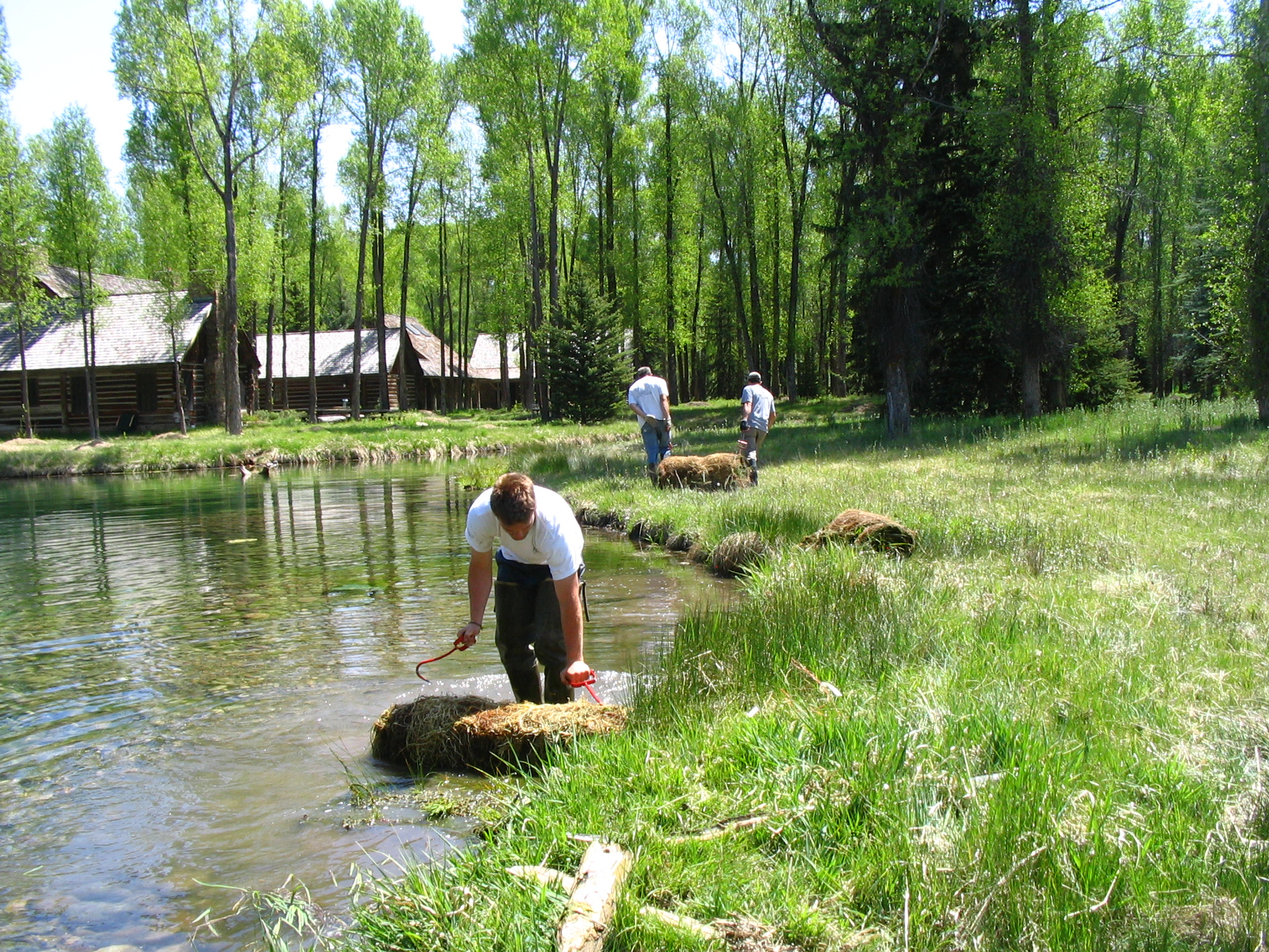 We help your clients - Build a wildlife pond | Improve stream habitat and fishing | Design site appropriate, native seed mixes | Develop in wetlands | Navigate Teton Co. WY environmental regulations | Acquire building permits in the Teton Co, WY Natural Resource Overlay | Purchase a property in Teton Co WY to increase buildable square footage through the Development Option Plan | Design a septic system for high groundwater areas | Control noxious weeds