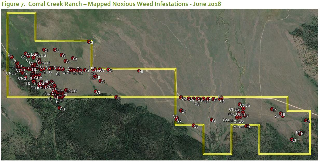 Mapped noxious weed infestations are clustered around disturbed areas, including buildings, ditches, and roads