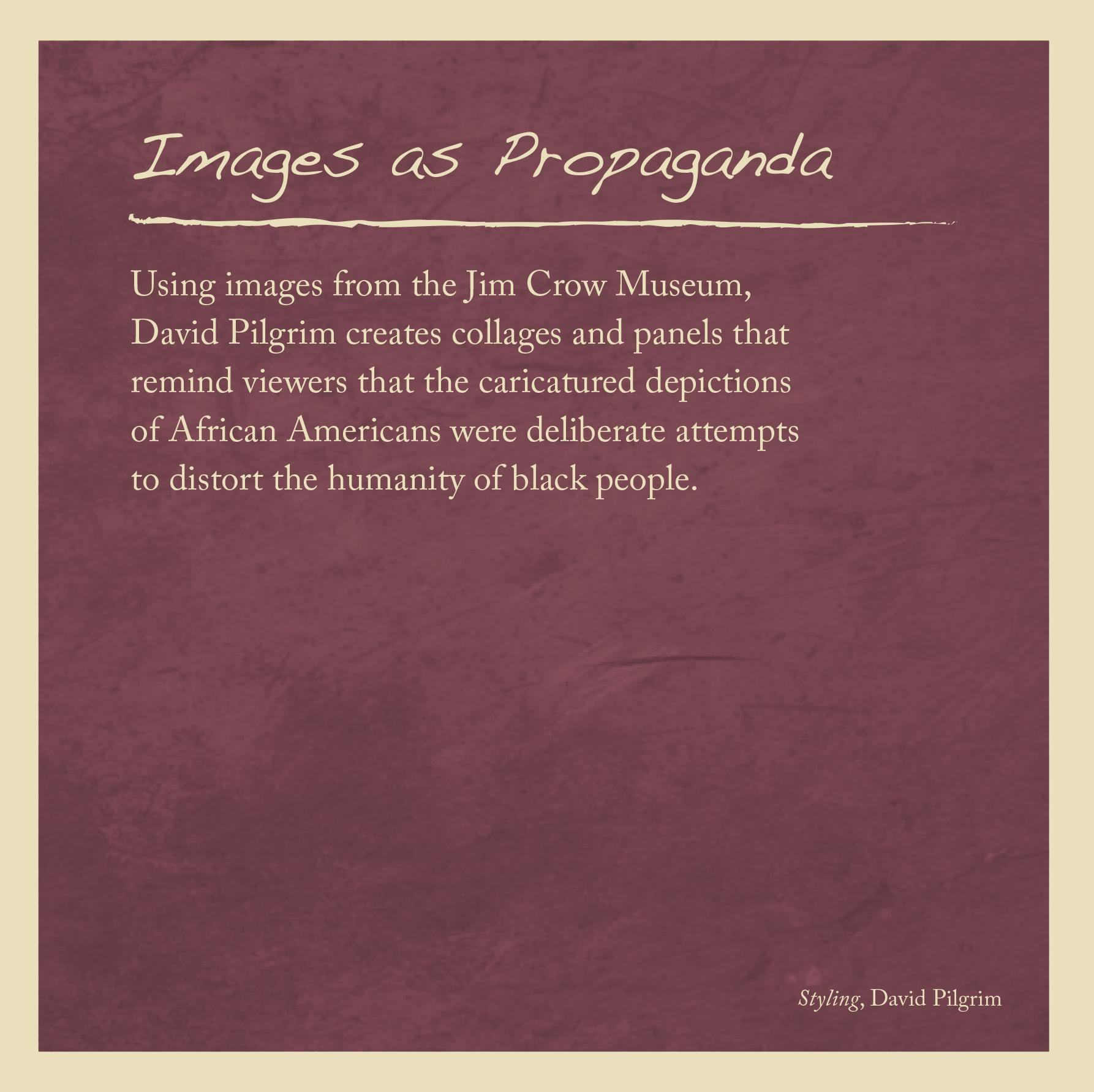 Images as Propaganda.jpg