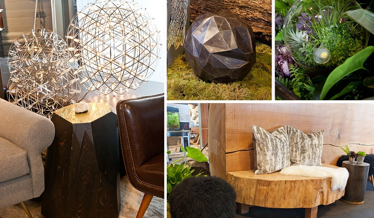 Seed of Life Exhibit Vignette; LOCZIdesign 2013