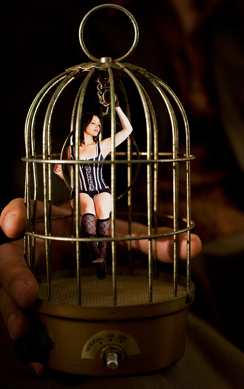 The_Gilded_Cage_09 copy.jpg