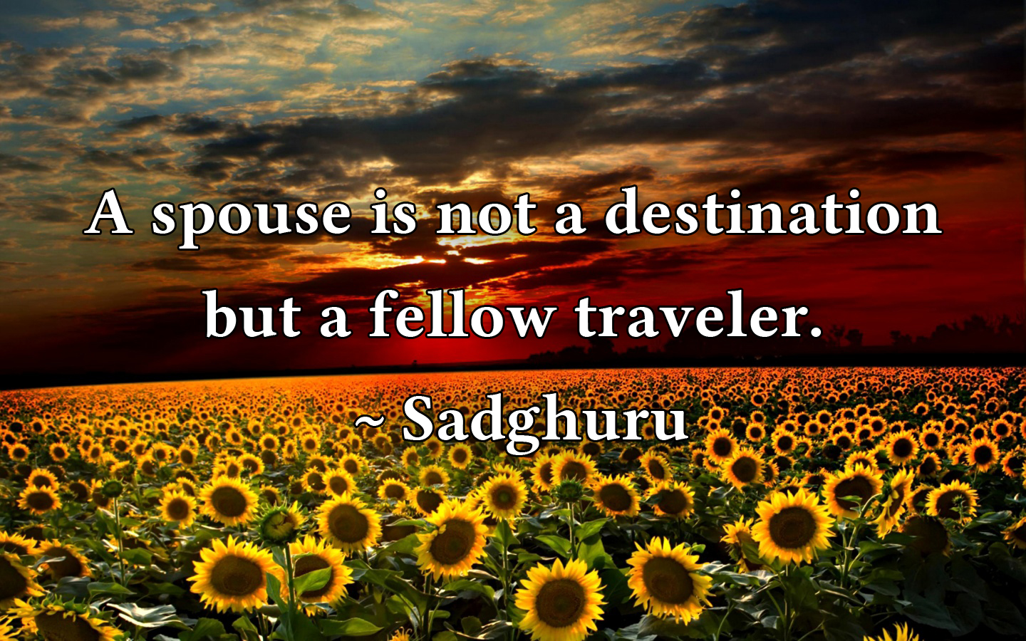 A Quote by Sadghuru.jpg