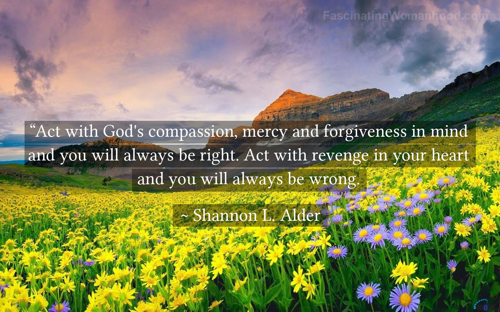 A Quote by Shannon Alder 9.jpg