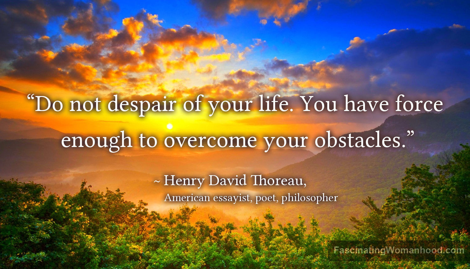 A Quote by Henry David Thoreau.jpg