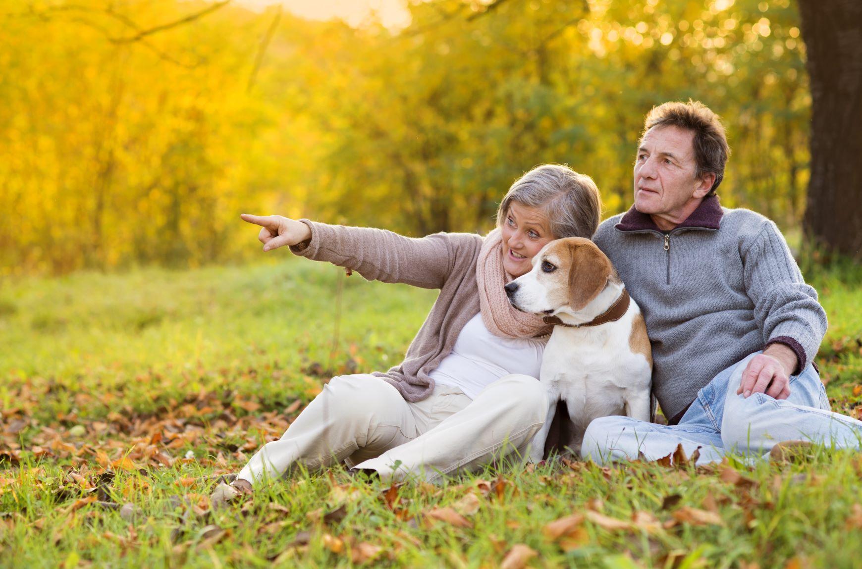 graphicstock-senior-couple-walking-their-beagle-dog-in-autumn-countryside_SCKPSac-W_smaller.jpg