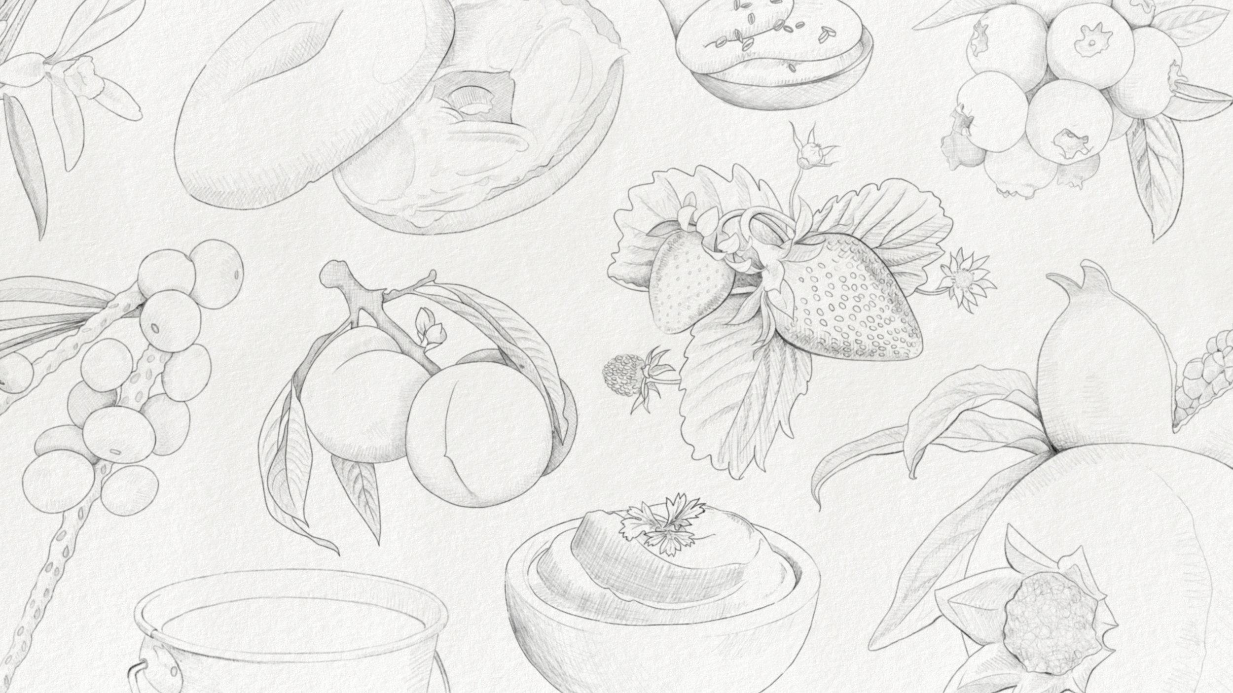 GVC_Web_Illustration_Sketches_v1psd.jpg