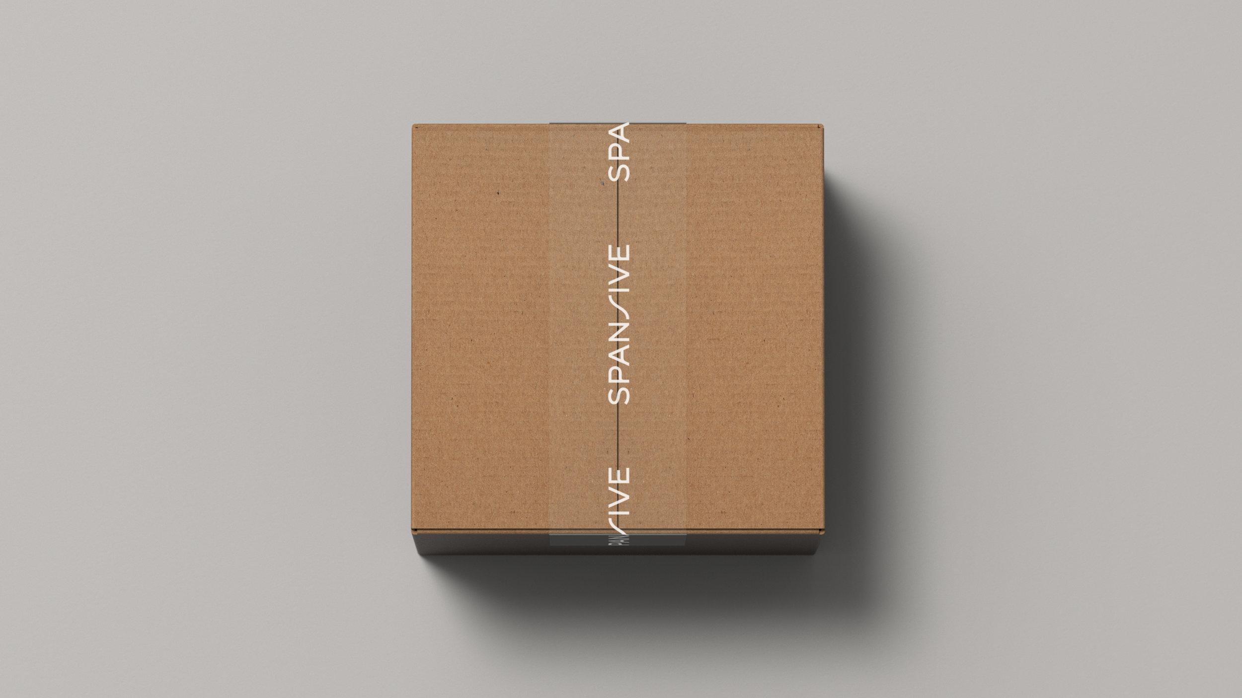 EnlistedWeb_Spansive_Packaging_Unboxing01_V2.jpg