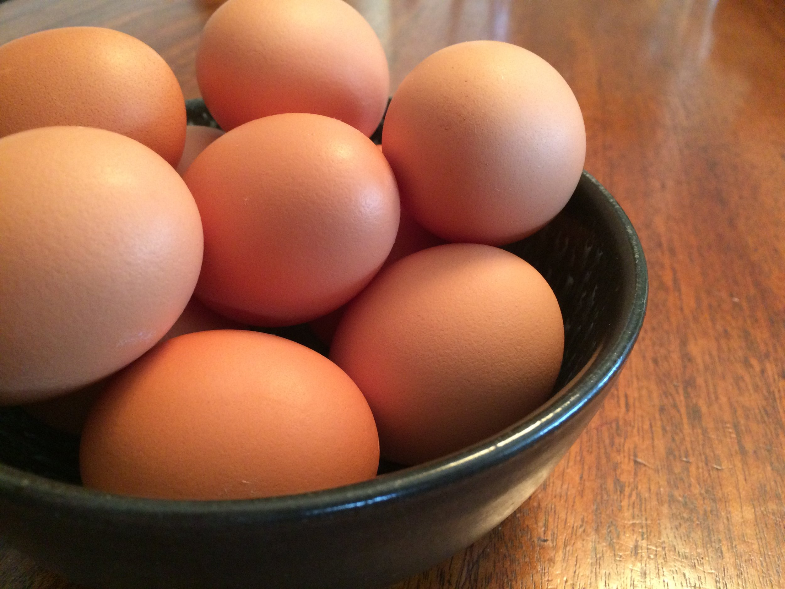 Eggs bowl.JPG