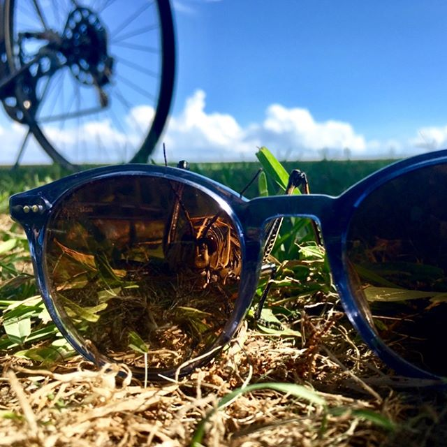 That moment when your sunglasses match the sky.. #saganeyewear #comingsoon #sagan #eyewear #sunglasses #tradewhenyouwant #spottedinsagan #nola #sttammanytrace