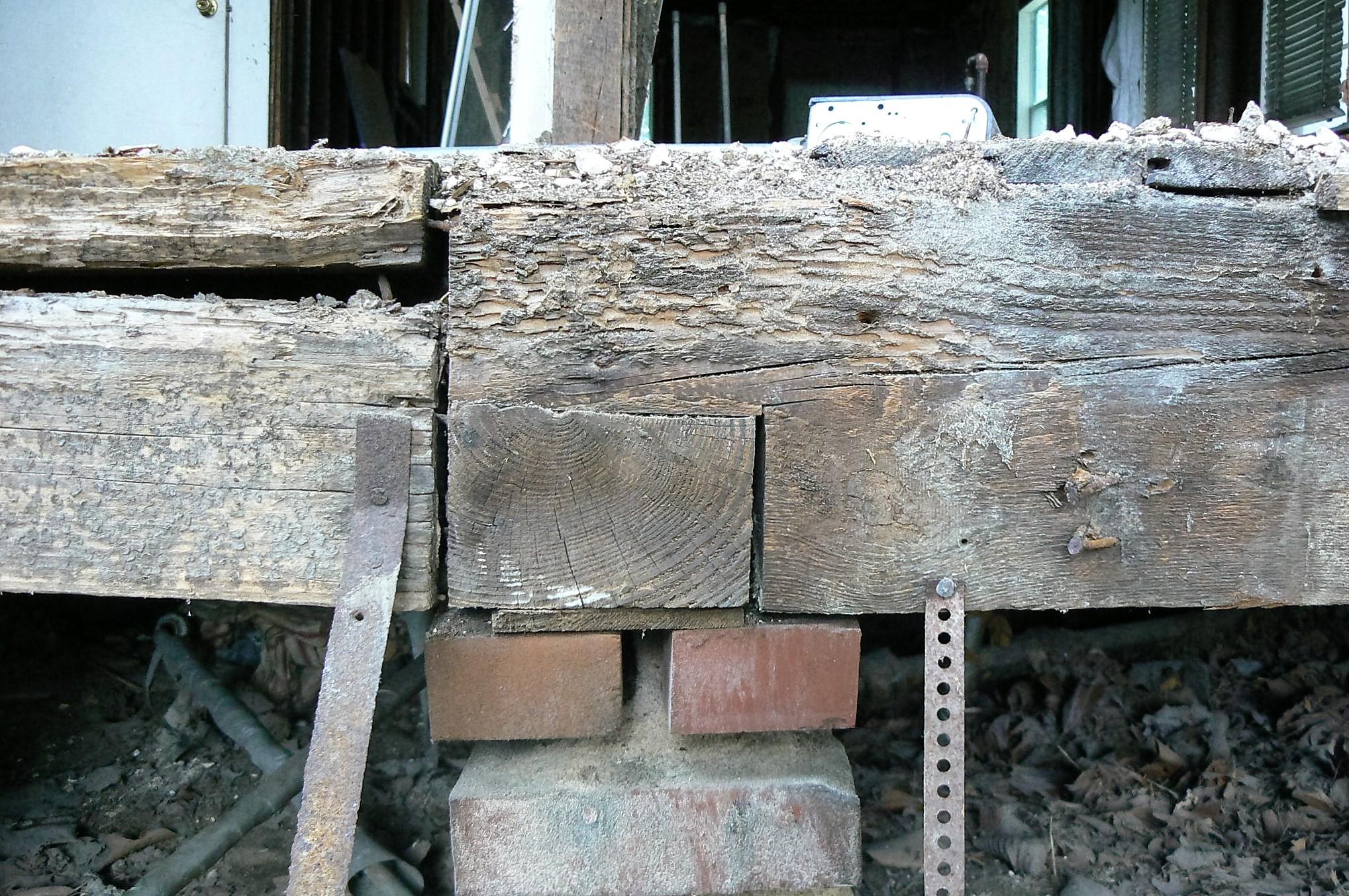 P1120744 enhanced timber.jpg