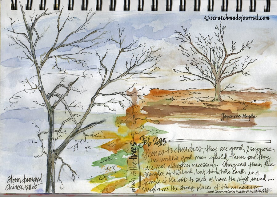 James Fenimore Cooper quote trees sketch - scratchmadejournal.com