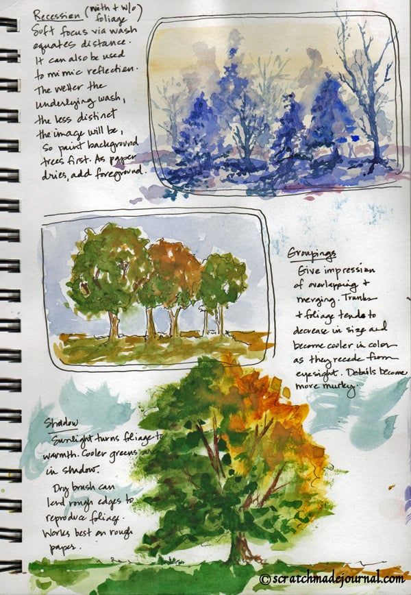 tree sketch watercolor study - scratchmadejournal.com