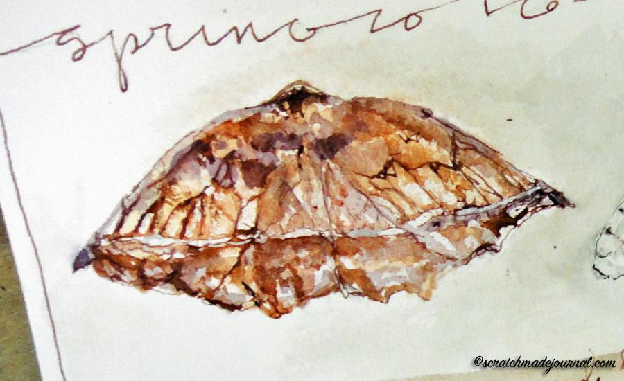moth watercolor detail - scratchmadejournal.com
