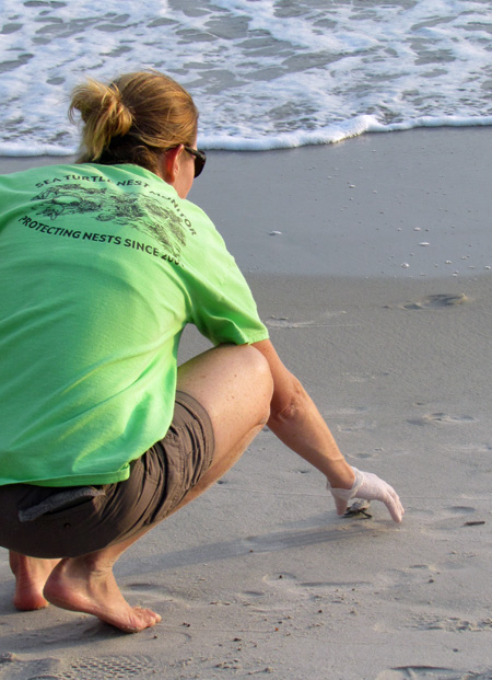 Releasing a rescued baby Loggerhead sea turtle into the ocean. Making a difference wherever I can!