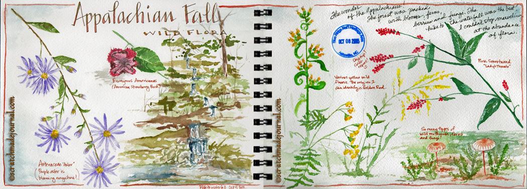 Appalacian wildflowers watercolor sketch - scratchmadejournal.com