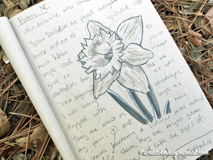 Encouraging the gentle art of nature journaling & tips for every stage of development - scratchmadejournal.com