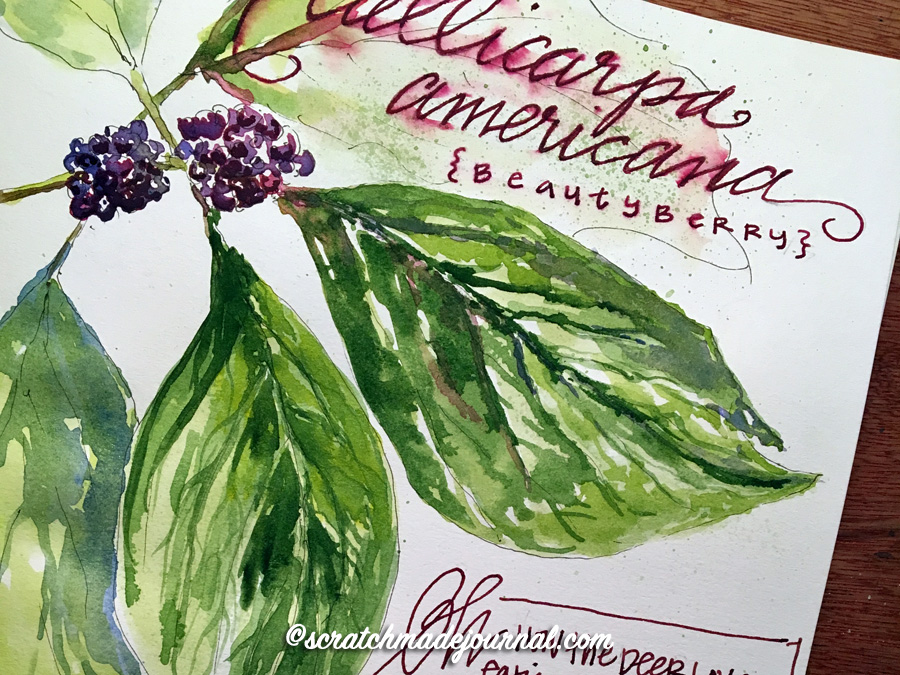Watercolor mistakes in a Fabriano sketchbook - ScratchmadeJournal.com