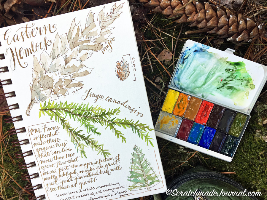 Complete review of the Expeditionary Art Pocket Palette for watercolor - scratchmadejournal.com