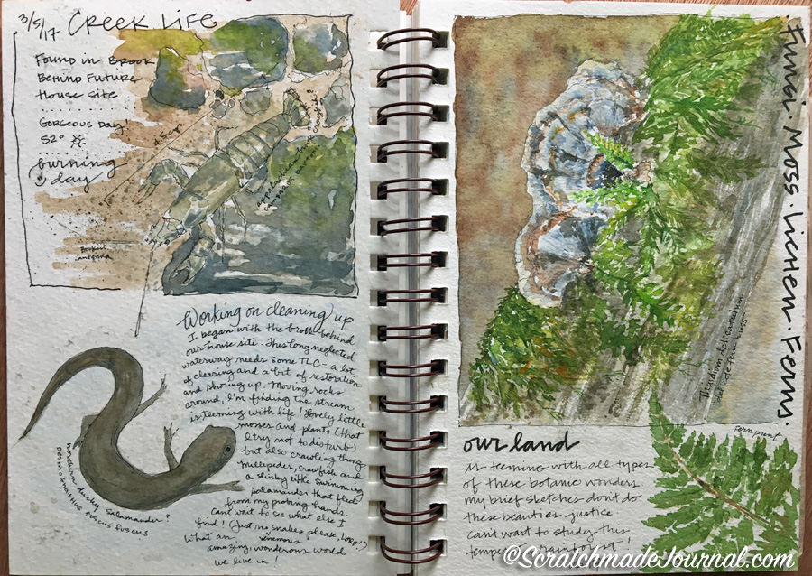 Nature journaling pages with watercolor & pen in Strathmore Visual Journal - ScratchmadeJournal.com