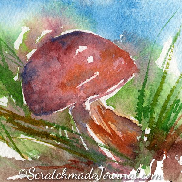 Mushroom watercolor sketch - ScratchmadeJournal.com