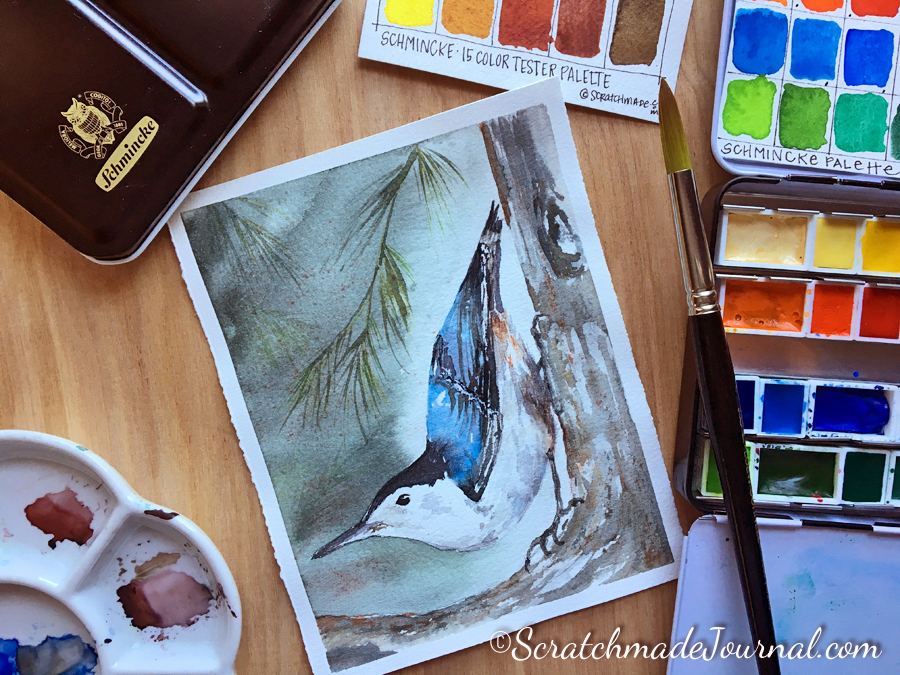 White Breasted Nuthatch bird watercolor - ScratchmadeJournal.com