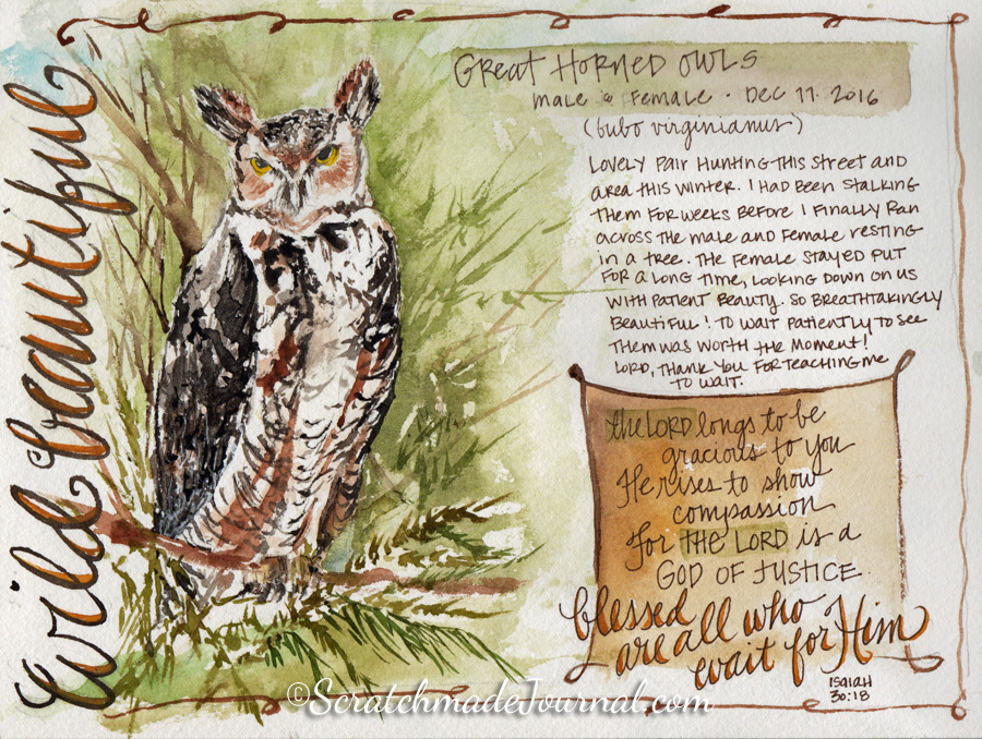 Great Horned Owl watercolor journal sketch ©ScratchmadeJournal.jpg