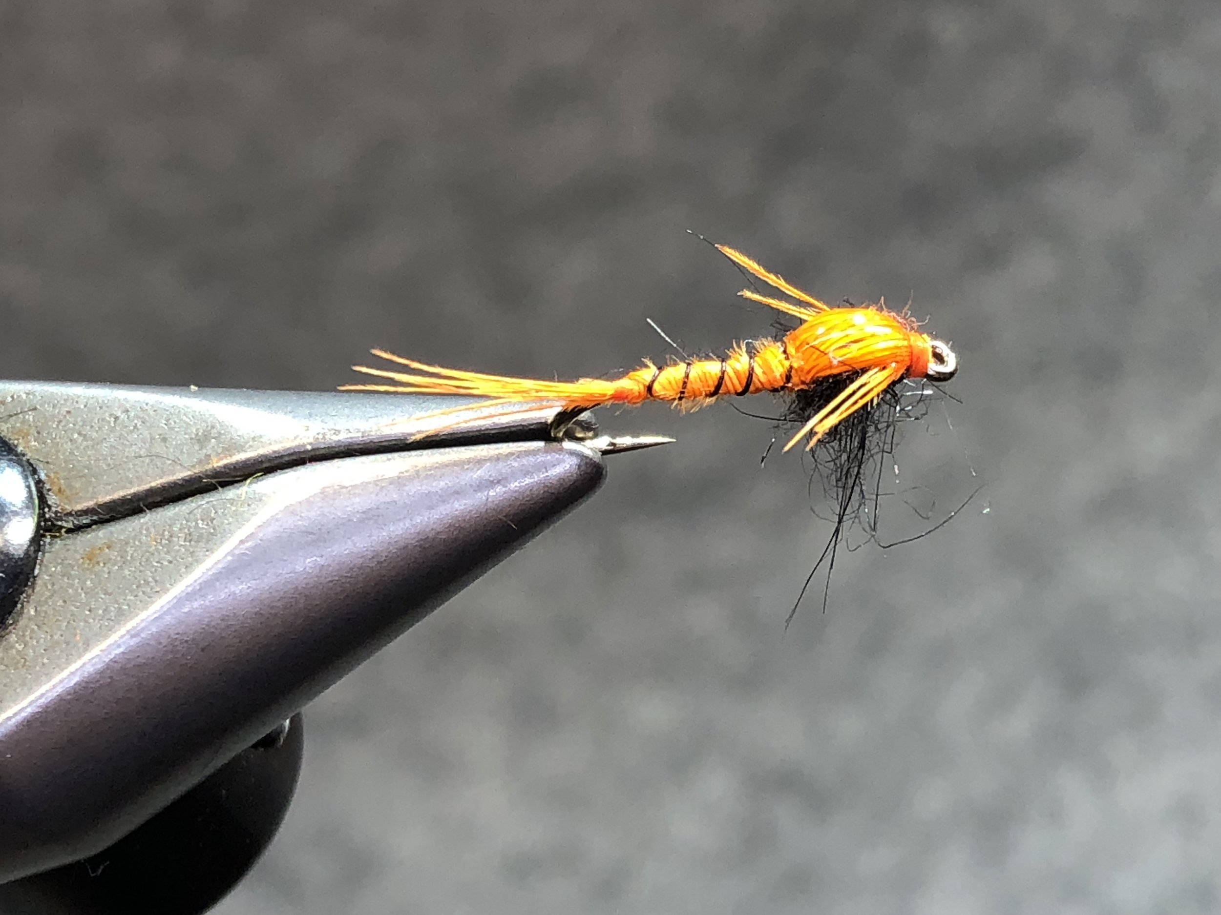 The Panfish Pheasant Tail Nymph