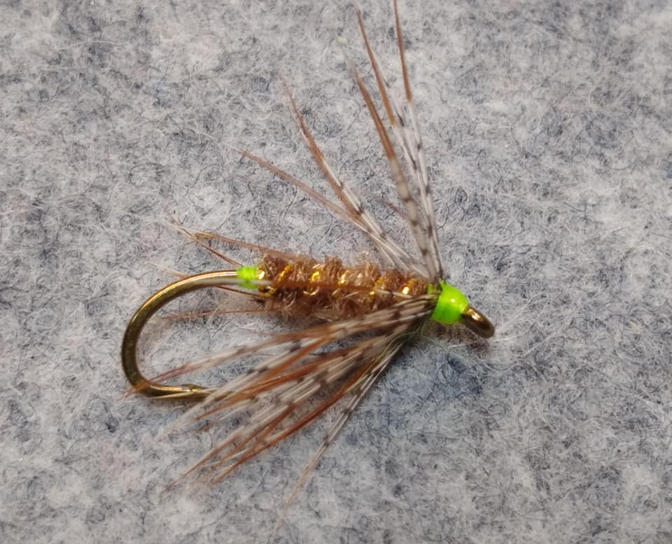 The Green Tail Caddis