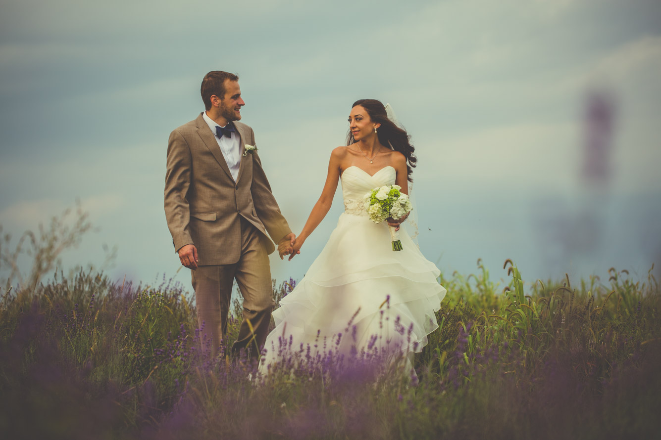 Lavender Fields at Springfield Manor